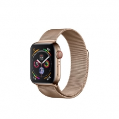 Apple Watch Series 4 GPS + LTE 40mm Gold Steel w. Gold Milanese l. Gold Steel (MTUT2)