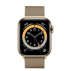 Apple Watch Series 6 GPS + Cellular 40mm Gold Stainless Steel Case w. Gold Milanese L. (M02X3/M06W3)