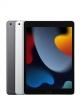 Apple iPad 10.2 2021 Wi-Fi + Cellular 256GB