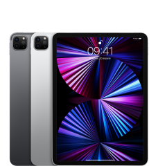 Apple iPad Pro 11 2021 Wi-Fi + Cellular 2TB